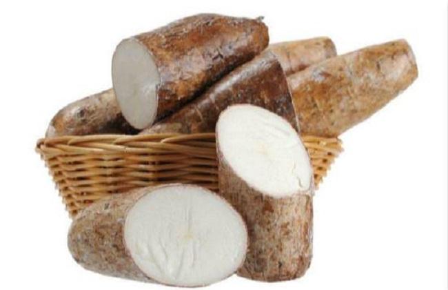 木薯种植的方法与时间