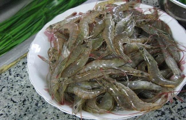 河虾应该怎么养殖