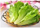 生菜怎么定植才能高产