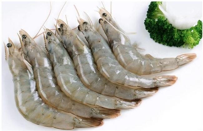南美白对虾 养殖 技术