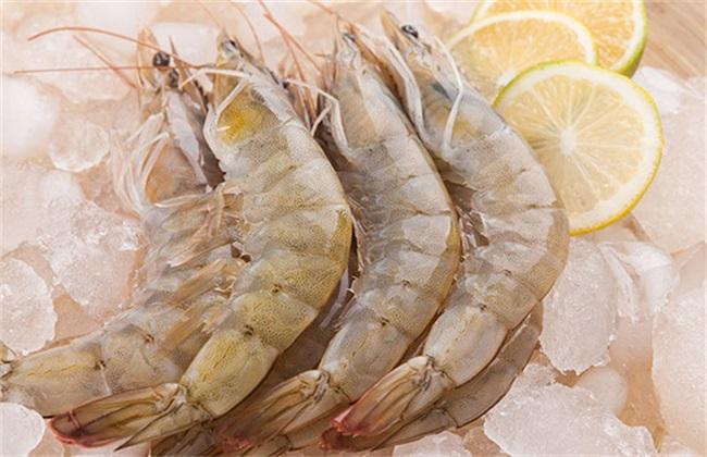 南美白对虾 饲养管理 方法