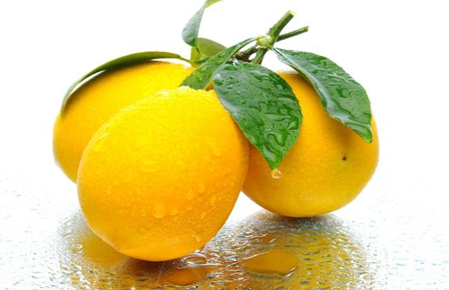 柠檬的果园管理