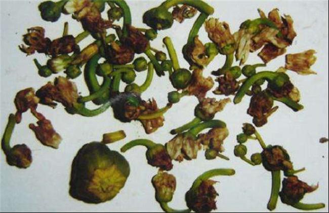 辣椒落花落果的原因及防治方法