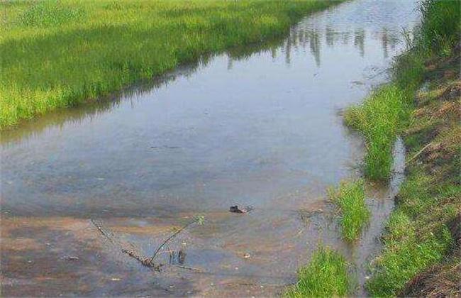秋后河蟹养殖注意事项