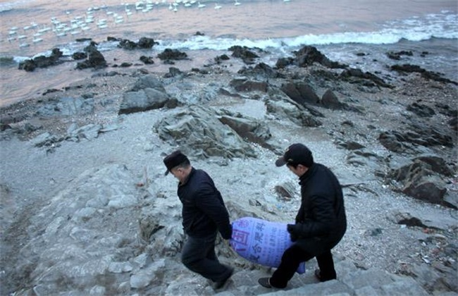 海参越冬期管理技术