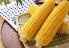 玉米秸秆还田时该注意什么