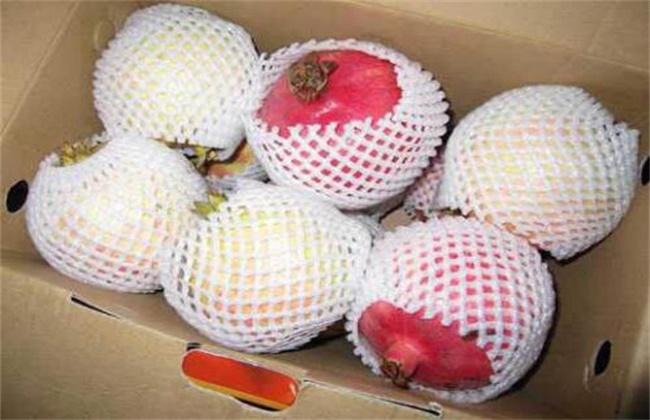 石榴价格多少钱一斤