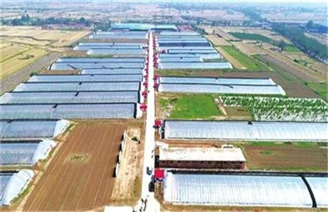 新型农业种植模式