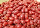 羊奶果多少钱一斤