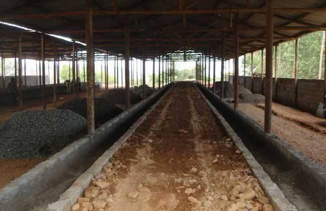 养牛场建设方案