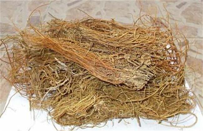 龙胆草价格多少钱一斤