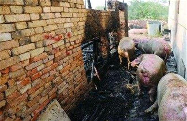 养猪场如何预防火灾