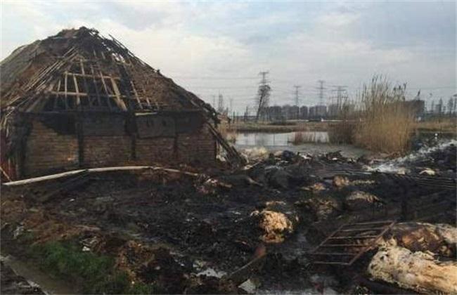 养猪场 如何预防 火灾