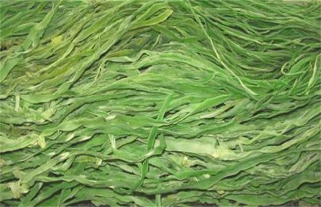 贡菜 种植 技术
