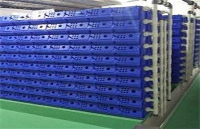 室内养殖小龙虾技术