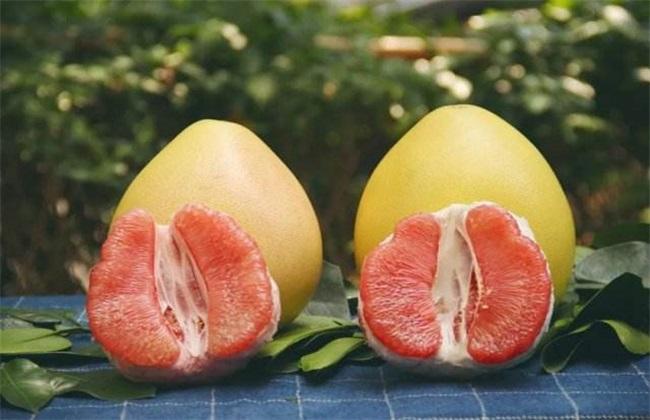 红肉蜜柚 种植 管理要点