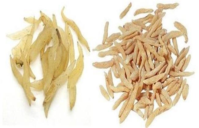 天冬和麦冬的区别