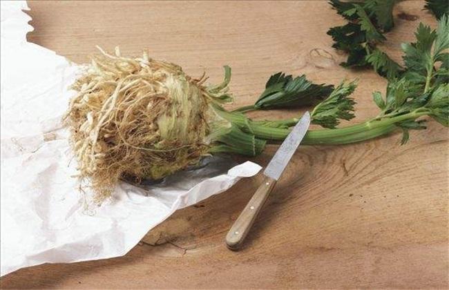 根芹 种植 技术