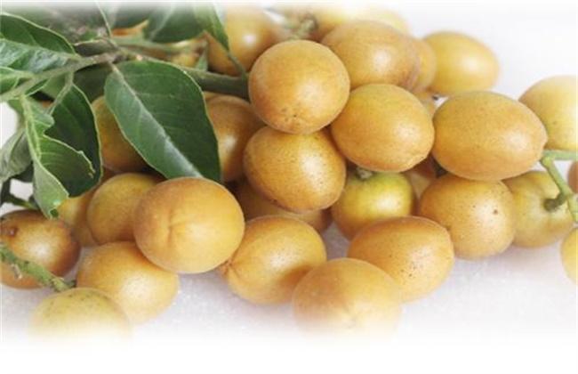 黄皮果多少钱一斤