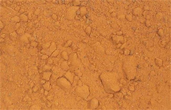 海金沙多少钱一斤