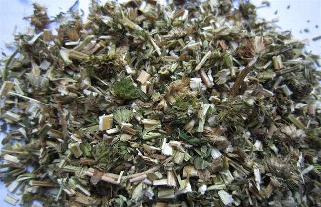 益母草的价格多少钱一斤