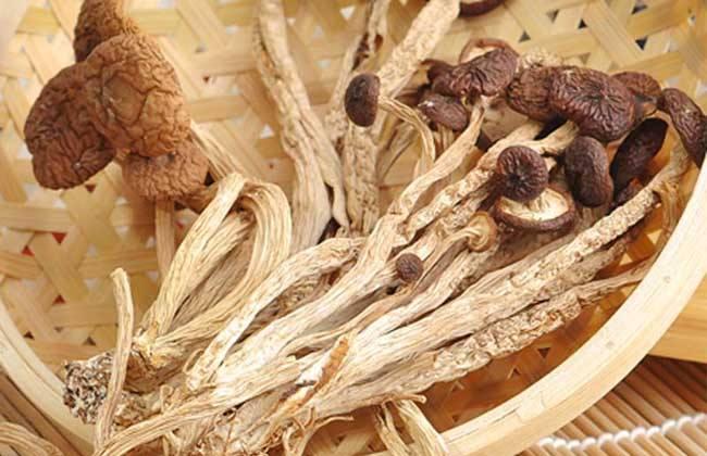 茶树菇多少钱一斤