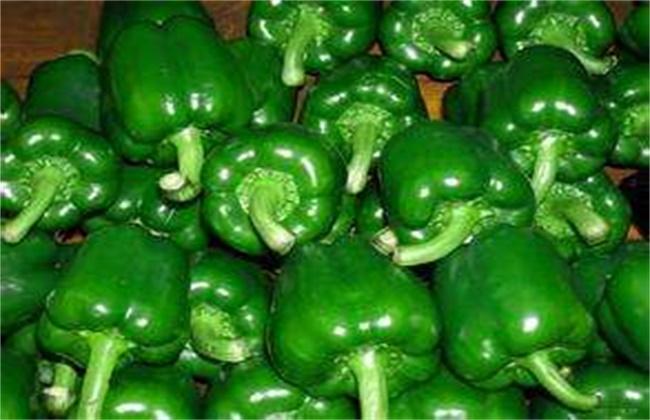 甜椒和青椒的区别