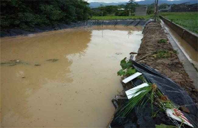 暴雨洪灾后的池塘处理