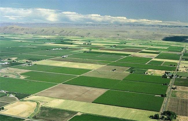 农业模式发展趋势