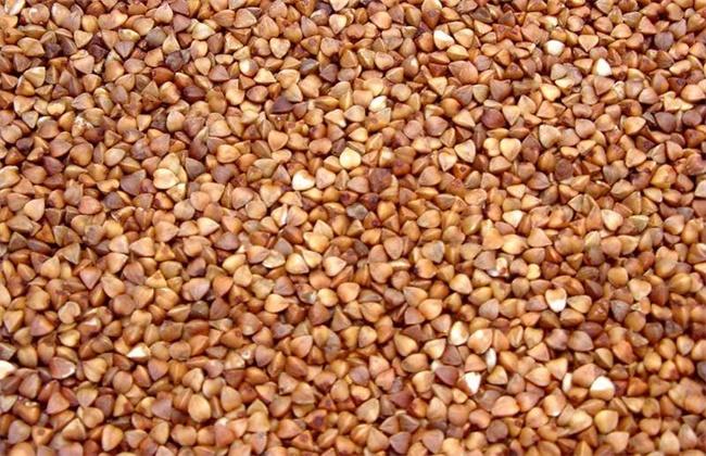 荞麦和苦荞麦的区别