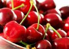 樱桃价格多少钱一斤