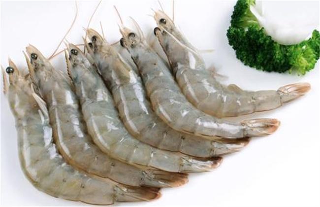 南美对虾多少钱一斤