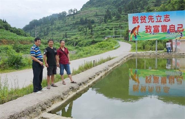 农村创业致富小项目