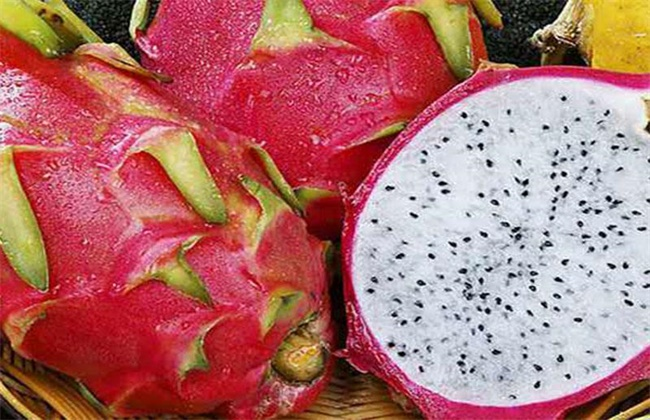 火龙果常见种类及图片