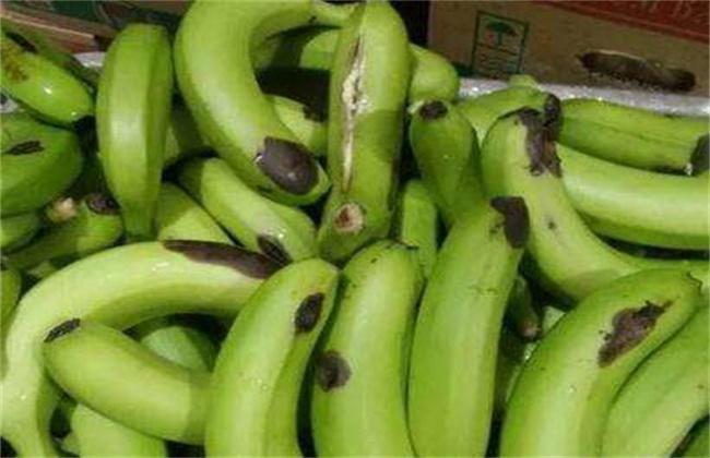 香蕉水烂原因及预防方法