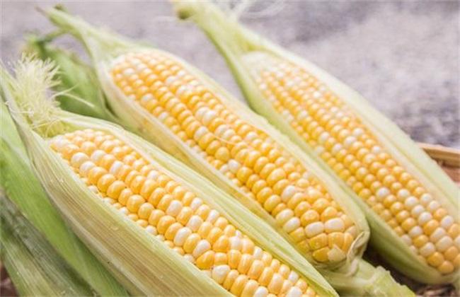 干旱地区 适合种植 农作物