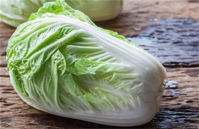 大白菜 中后期 管理技术