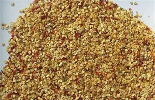 辣椒种植技术与管理