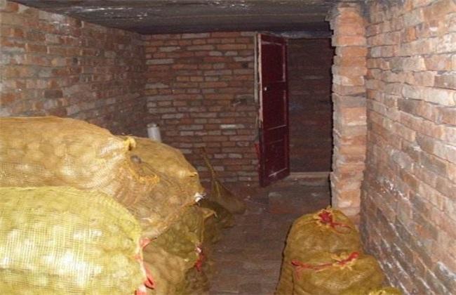 土豆贮藏 土豆贮藏技术 土豆