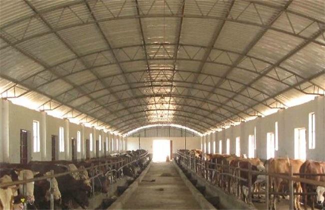 养牛场的建设要求