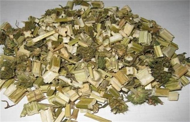 益母草的功效与作用及禁忌