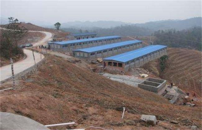 养鸡场的建设要求