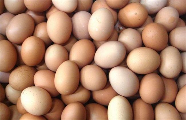 2019鸡蛋多少钱一斤