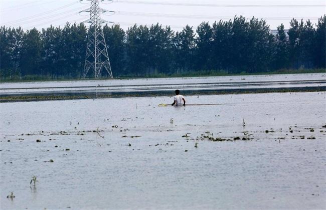 台风天气 水产养殖 应对措施