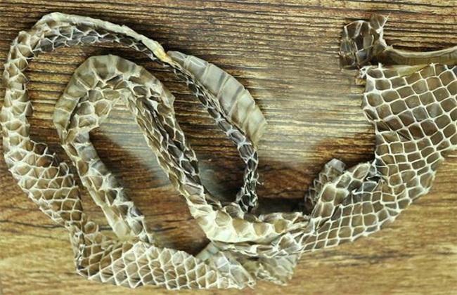 蛇蜕多少钱一斤