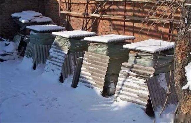 冬季养蜂正确的保温方法