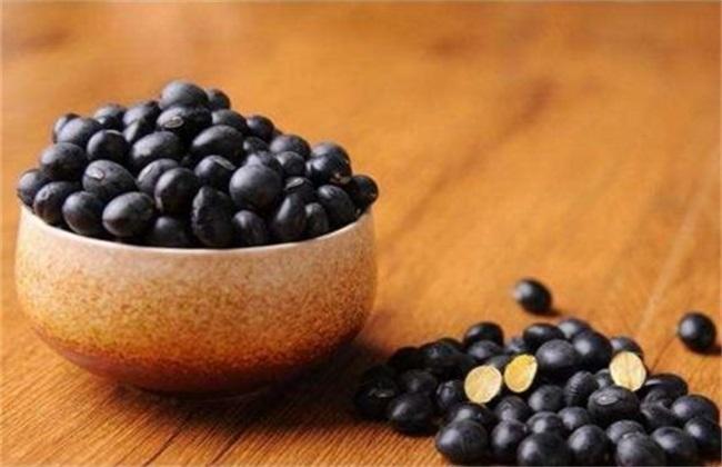 黑豆的功效与作用 黑豆功效