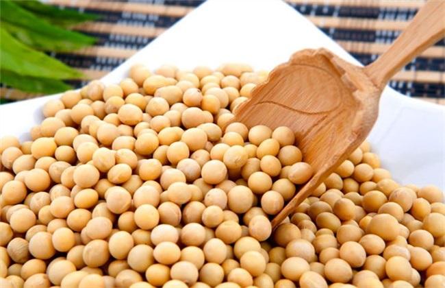 黄豆多少钱一斤 黄豆价格