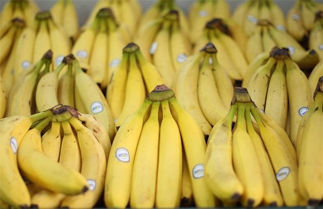香蕉多少钱一斤 香蕉价格
