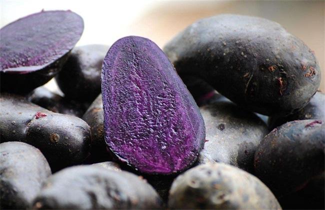 黑土豆多少钱一斤 黑土豆价格